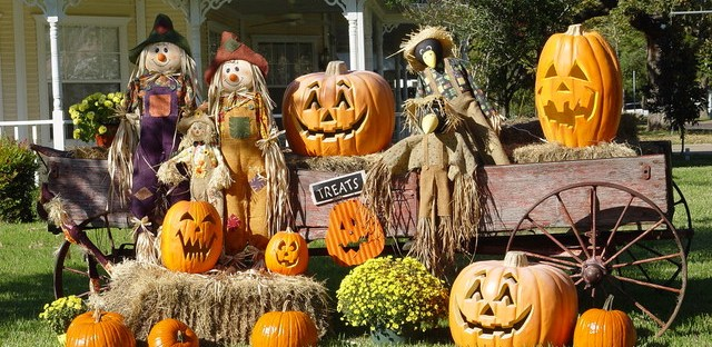 Decorated pumpkins in a garden